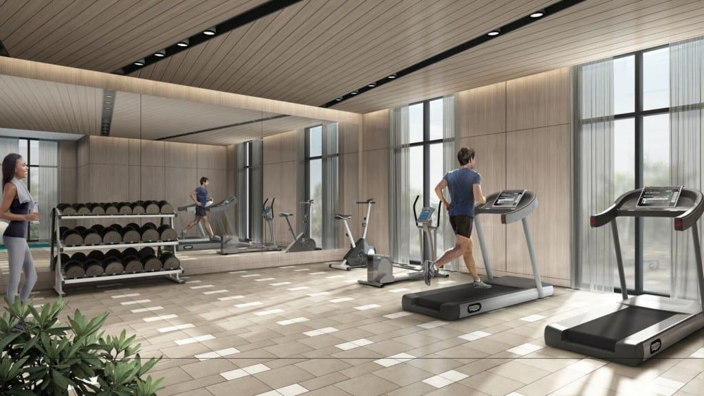 canvas gym